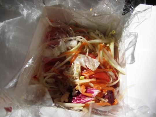 Papaya-Karotten-Chinakohl-Salat - mit vielen roten Chillies - der Burner!