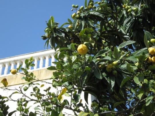 Schöne Aussichten auf Sizilien