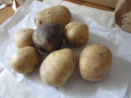 jede Menge Kartoffeln und eine Rote Beete