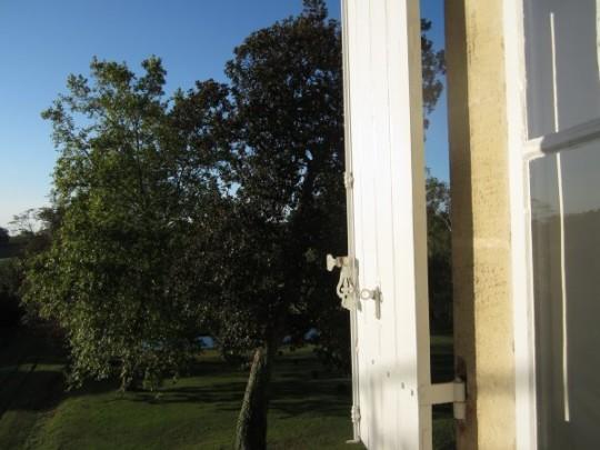 A Room with a View: Ausblick aus unserem Zimmer